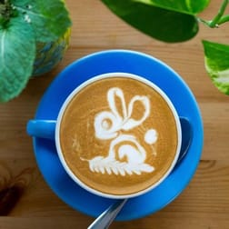 Cafe & Coffee Shop  business for sale in Ormond - Image 3