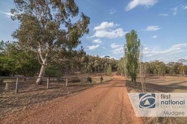 509 Black Springs Road Mudgee NSW 2850 - Image 2