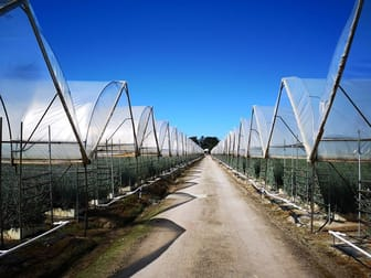 Agricultural  business for sale in Pearcedale - Image 2