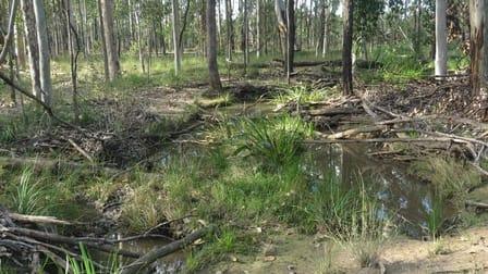 Lot 2 Clearfield Road, Myrtle creek via Casino NSW 2470 - Image 3