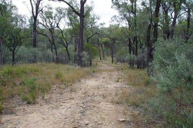709 Tuppiari Road Narrabri NSW 2390 - Image 3