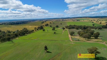 2610 Castlereagh Highway Mudgee NSW 2850 - Image 1
