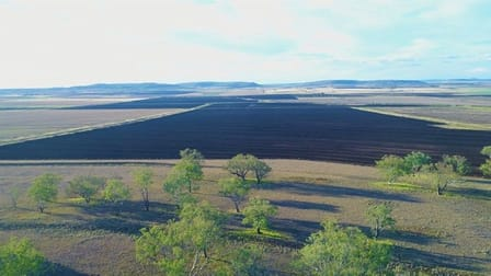 525 Holley Road Mount Molar QLD 4361 - Image 2