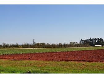 204 Graham Road Tolga QLD 4882 - Image 3