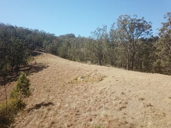 Lot 1 DP 369809 Off Quartpot Creek Road, Underbank Via Dungog NSW 2420 - Image 3