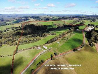 829 Myalla Road Milabena TAS 7325 - Image 1