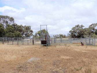 Lot 200 Cold and Wet Road Field SA 5265 - Image 2