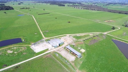 135 BROOKERS ROAD Darnum VIC 3822 - Image 1