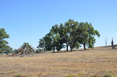 """seuters"" Pt ""yerami"", Castlereagh Hwy & 705 Springfield Ln, Gulgong NSW 2852 - Image 2"