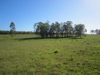 255 Avenue Road Myrtle Creek NSW 2469 - Image 3