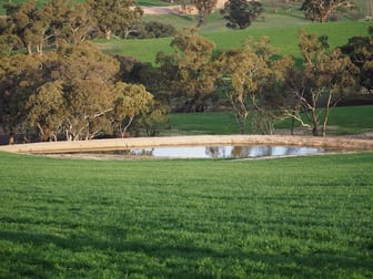 Ophir Road Bathurst NSW 2795 - Image 3