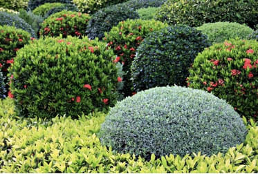 Garden / Nurseries  business for sale in VIC - Image 3