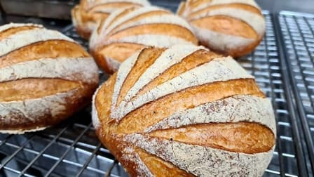Bakery  business for sale in Frankston - Image 2