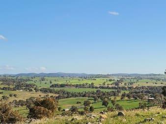 Salt Clay Road Cootamundra NSW 2590 - Image 2