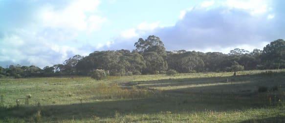 Lot 88 Dangelong Road Cooma NSW 2630 - Image 1