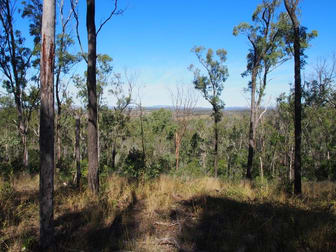 LOT 39 NIELSONS ROAD Good Night QLD 4671 - Image 1