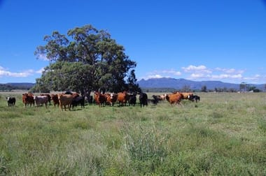 1387 Kaputar Road Narrabri NSW 2390 - Image 1
