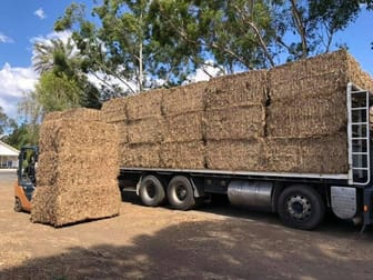 Animal Related  business for sale in Laidley - Image 2