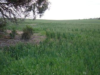 Lot 1177 Bootenal Road, Bootenal WA 6532 - Image 1