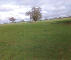Cnr Twenty Four Lane and Hillside Road Moama NSW 2731 - Image 2