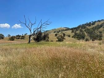 41/ Campbells Creek Road Mudgee NSW 2850 - Image 2