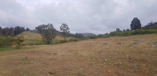 655 Monaghans Rd Manildra NSW 2865 - Image 3