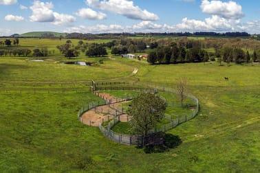 13192 Gwydir Highway Glen Innes NSW 2370 - Image 2