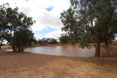 364 Rutledges lane Weethalle NSW 2669 - Image 1