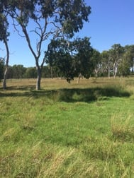 43 Farrellys Road Paget QLD 4740 - Image 2
