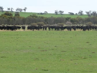 New Lot 2 Great Southern Highway Beverley WA 6304 - Image 1
