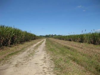 0 Daveson Road El Arish QLD 4855 - Image 1