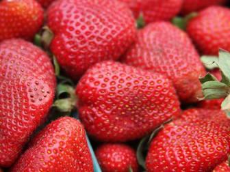 Fruit, Veg & Fresh Produce  business for sale in Melbourne - Image 3