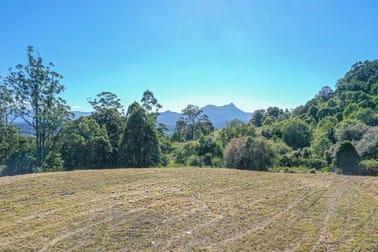 437 Mount Burrell Road Mount Burrell NSW 2484 - Image 2