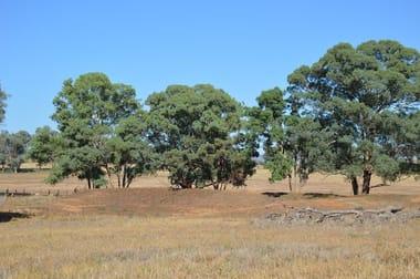 """seuters"" Pt ""yerami"", Castlereagh Hwy & 705 Springfield Ln, Gulgong NSW 2852 - Image 3"