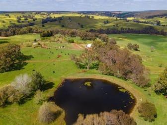 ' Winniwood Farm' Winnejup WA 6255 - Image 3