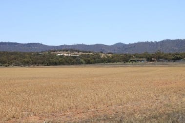 Sections 227, 229, 250 & 252 Pepper Tree Lane/Quarry Road Quorn SA 5433 - Image 1