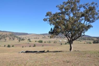 829 Muscle Creek Rd Muswellbrook NSW 2333 - Image 3