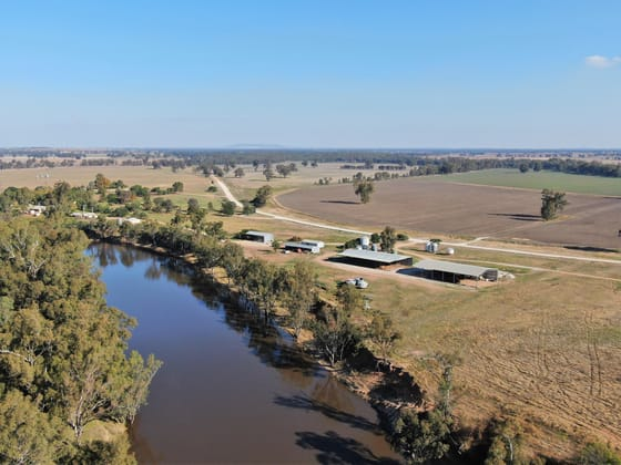 Brewarrana/2627 Buckingbong Road Narrandera NSW 2700 - Image 1