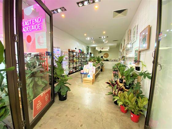 16 Ebenezer Place Adelaide SA 5000 - Image 2