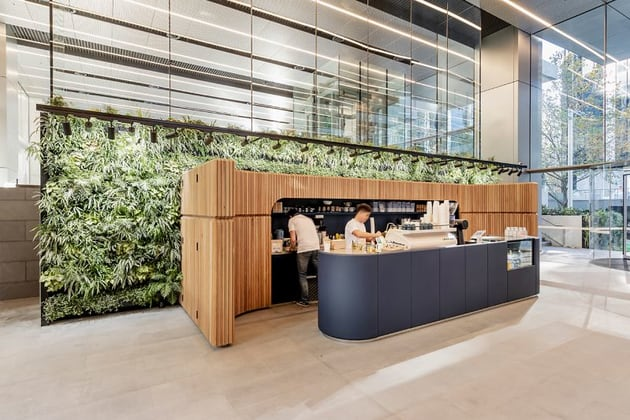 100 Mount Street North Sydney NSW 2060 - Image 5