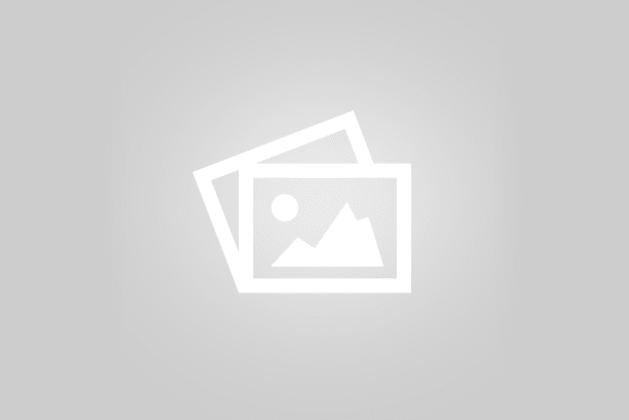 317-319 Warrigal Road Moorabbin VIC 3189 - Image 4