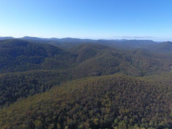 Gorton Timber, Mill Creek Road Stroud NSW 2425 - Image 1