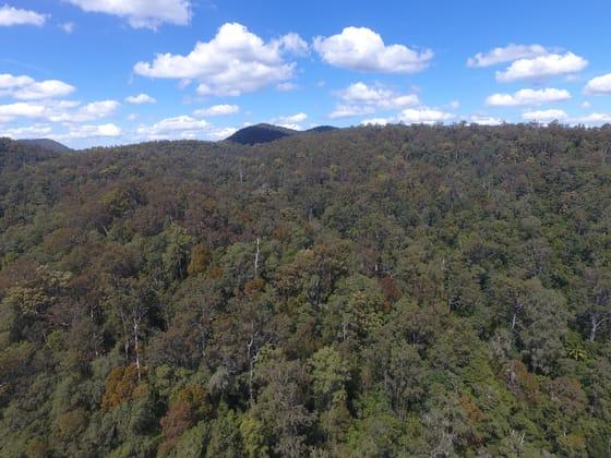 Gorton Timber, Mill Creek Road Stroud NSW 2425 - Image 4