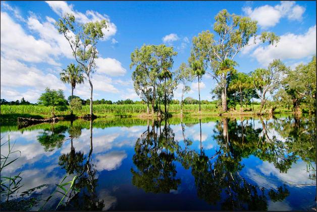 207 Pilchowski Road Giru QLD 4809 - Image 3
