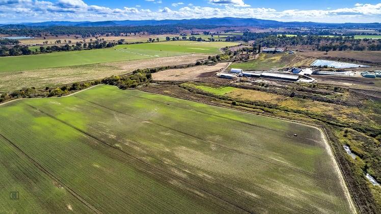 200 Telemon Homestead Road Innisplain QLD 4285 - Image 2