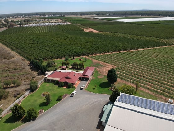 3384 Murray Valley Highway Cobram VIC 3644 - Image 1
