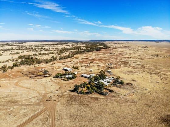 Landsborough Highway Longreach QLD 4730 - Image 3