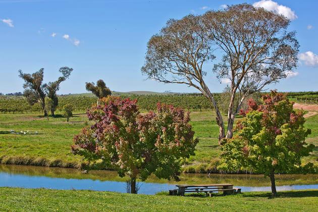 954 Icely Road Orange NSW 2800 - Image 4