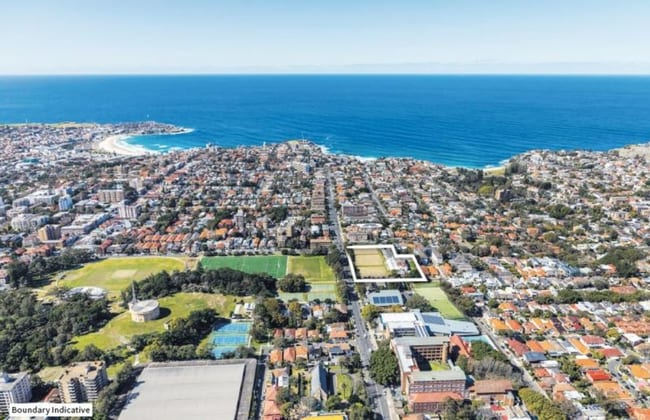 163 Birrell Street Waverley NSW 2024 - Image 4