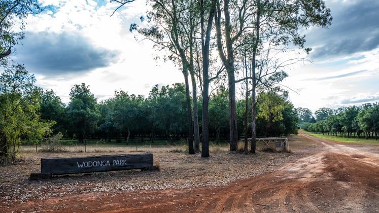 """""""Wodonga Park"""" 45 Mount Binga Road Mount Binga QLD 4306 - Image 2"""